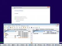 Торрент скачать Сборка Windows 10 от Flibustier 21H1 Compact [20246.1] (x64)